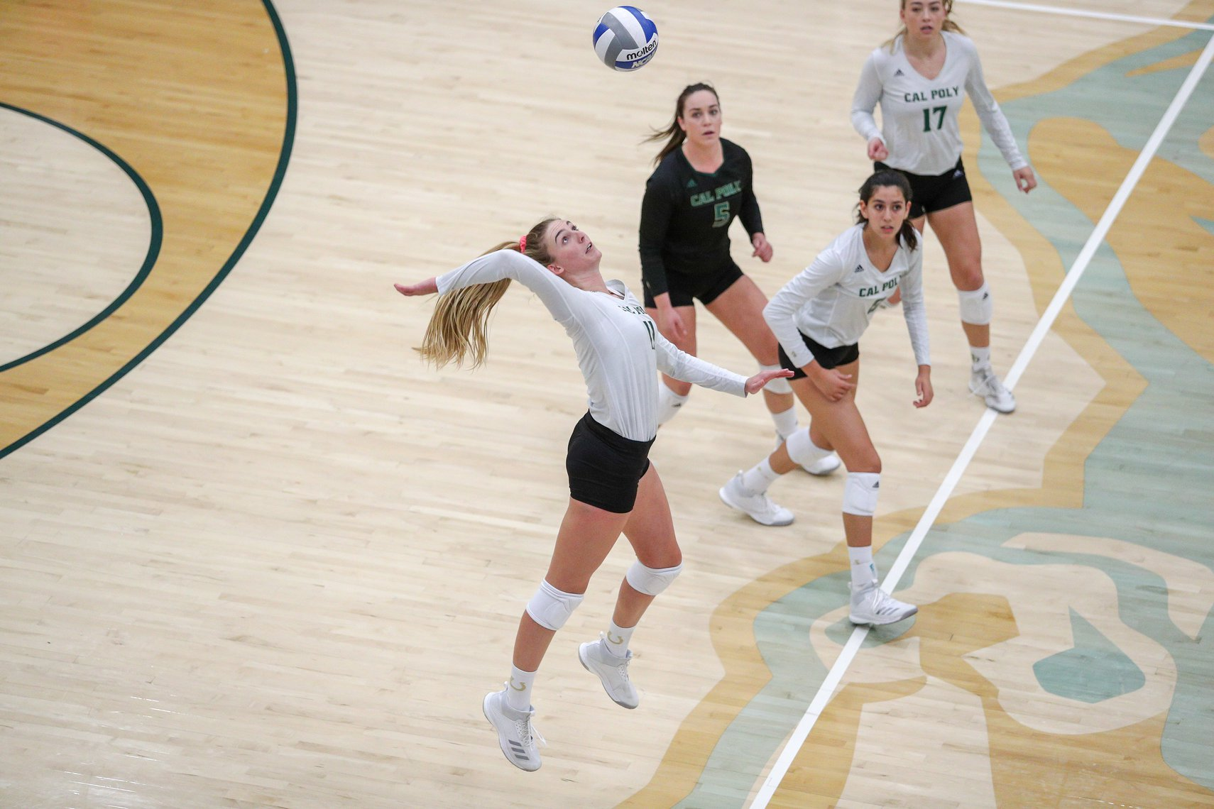Cal Poly Volleyball All Skills Camp 2019 Camp Information Iris Registration 3