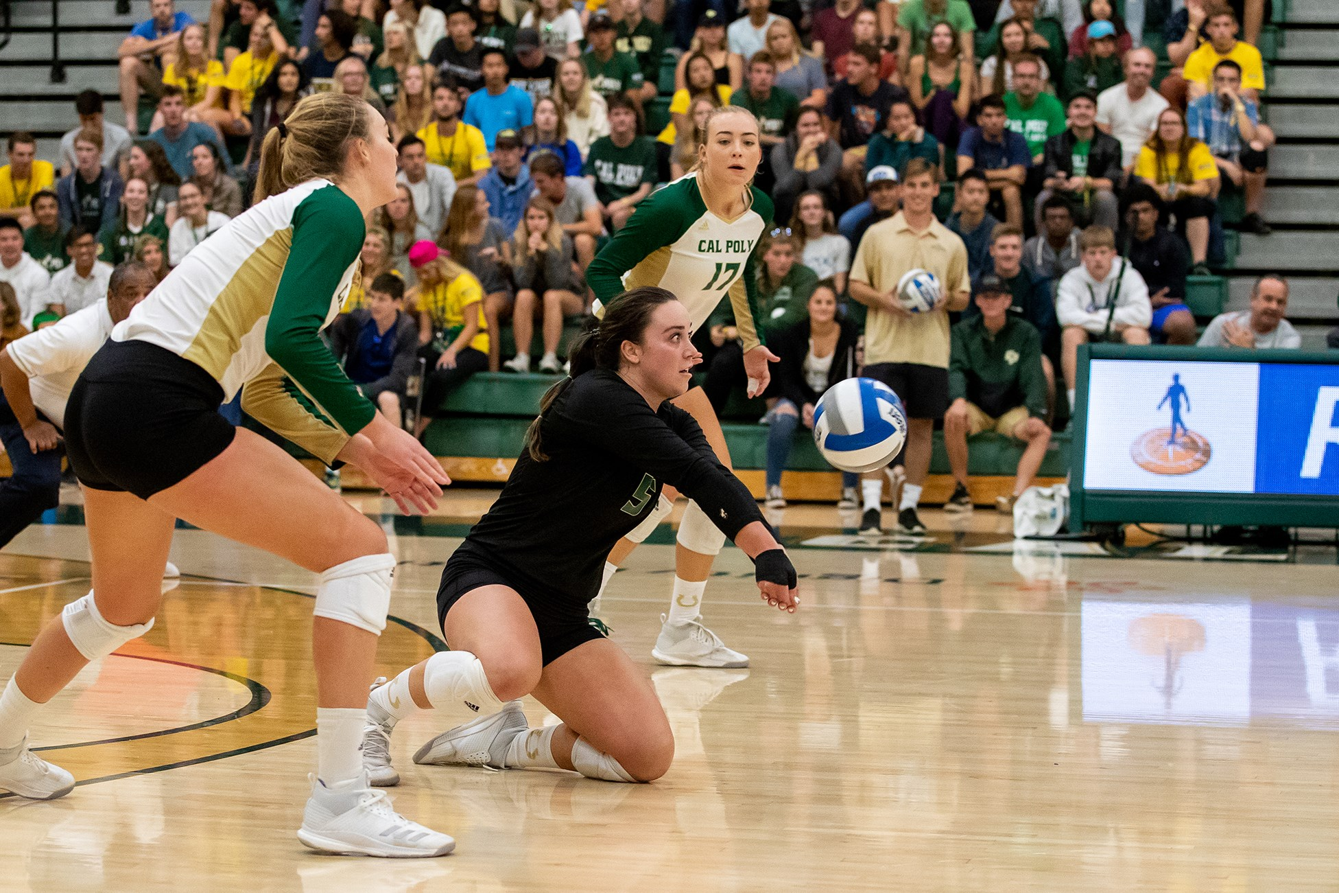 Cal Poly Volleyball Youth Camp 2019 Camp Information Iris Registration 3